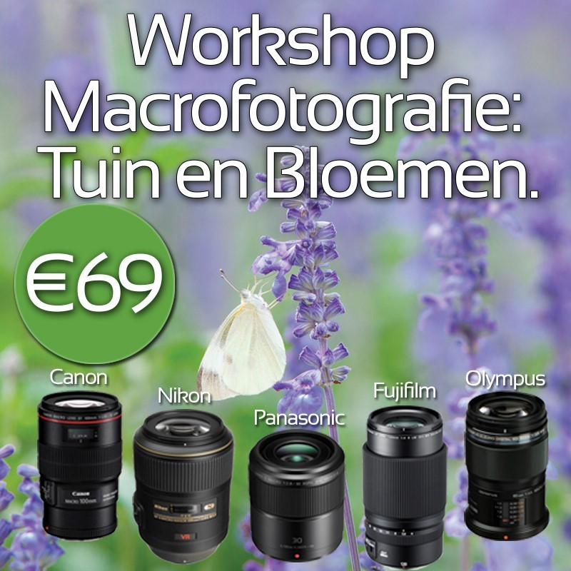 Workshop: macrofotografie